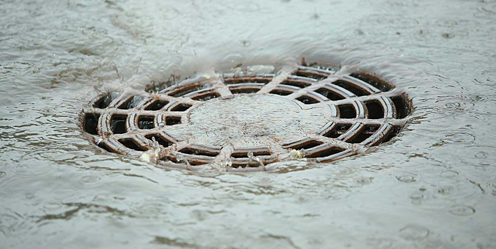 Municipal Separate Storm and Sewer Systems Compliance Support - MS4