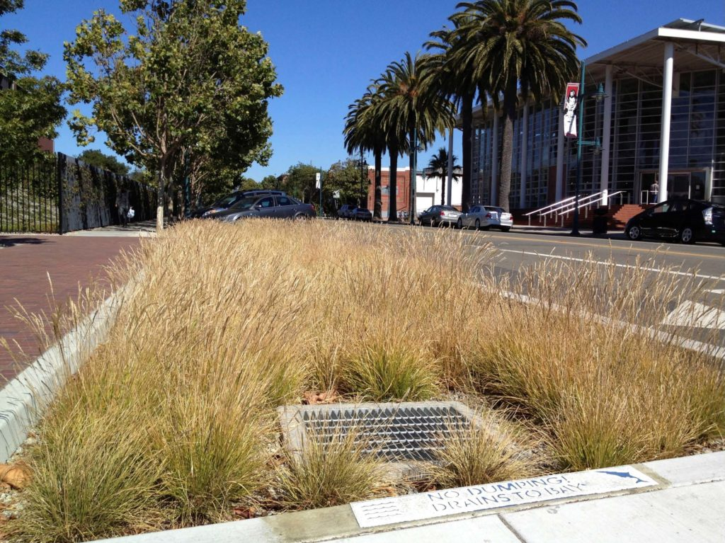 Implementing LID and Green Infrastructure